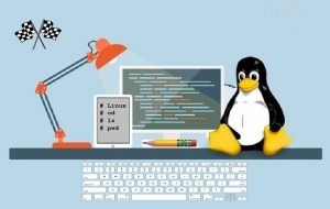 Linux Experts Can Run Institutes and Provide Online Help Regarding the Same