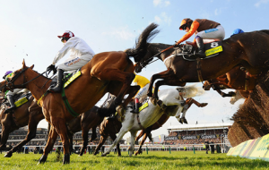 Make the Cheltenham Hunt Festival Truly Special